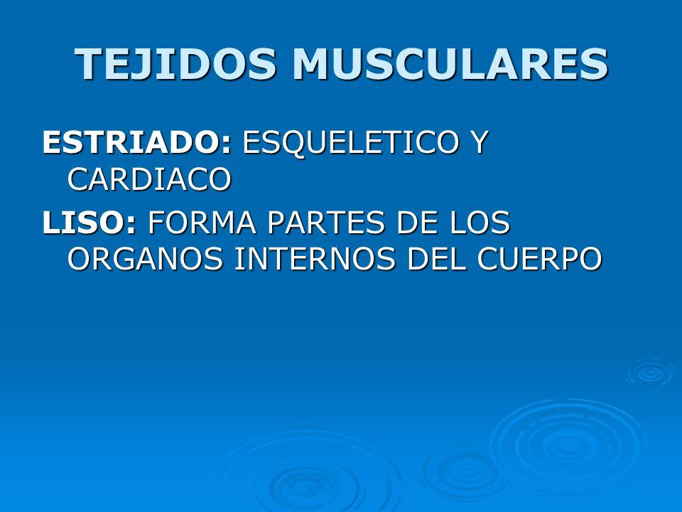 TEJIDOS MUSCULARES ESTRIADO: ESQUELETICO Y CARDIACO