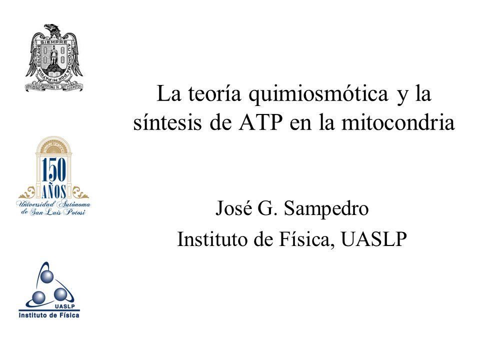 La teoría quimiosmótica y la síntesis de ATP en la mitocondria