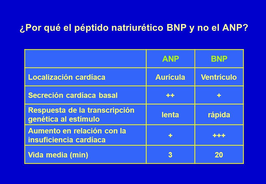 ¿Por qué el péptido natriurético BNP y no el ANP