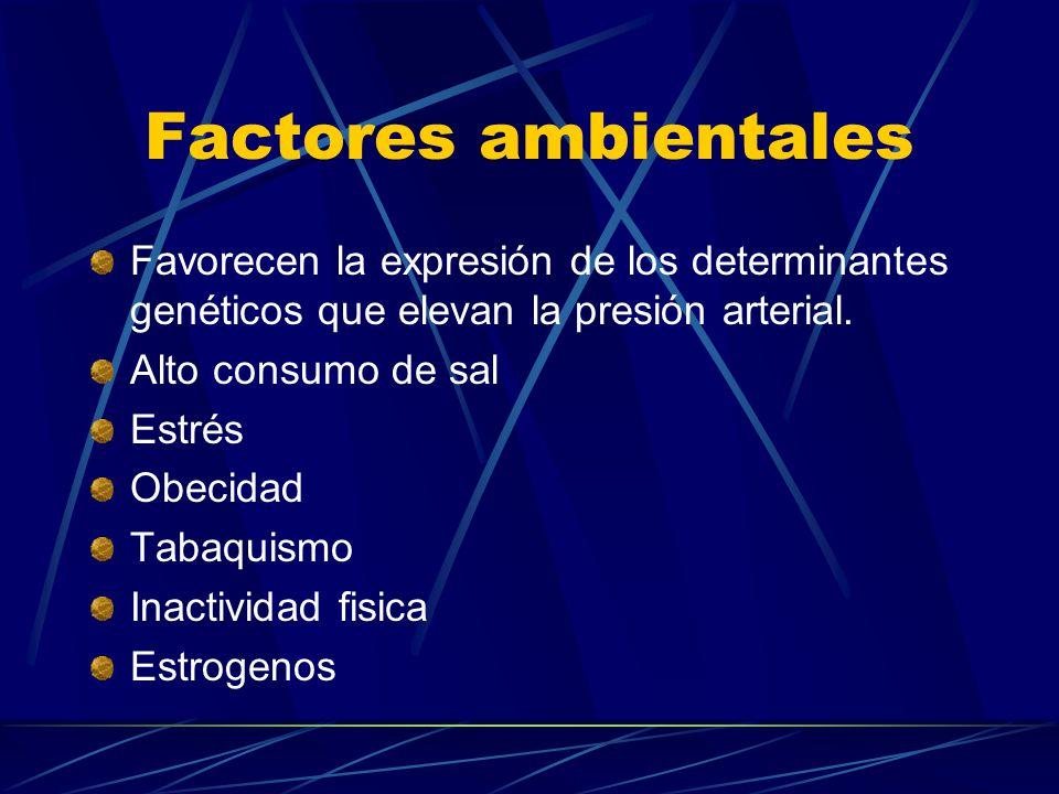 Factores ambientales Favorecen la expresión de los determinantes genéticos que elevan la presión arterial.