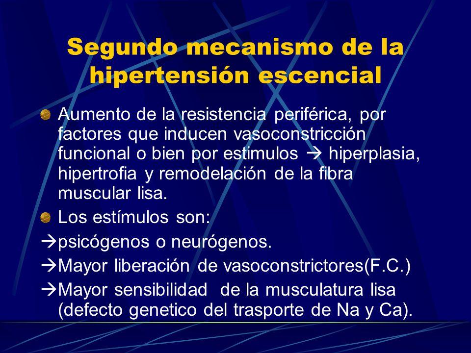 Segundo mecanismo de la hipertensión escencial