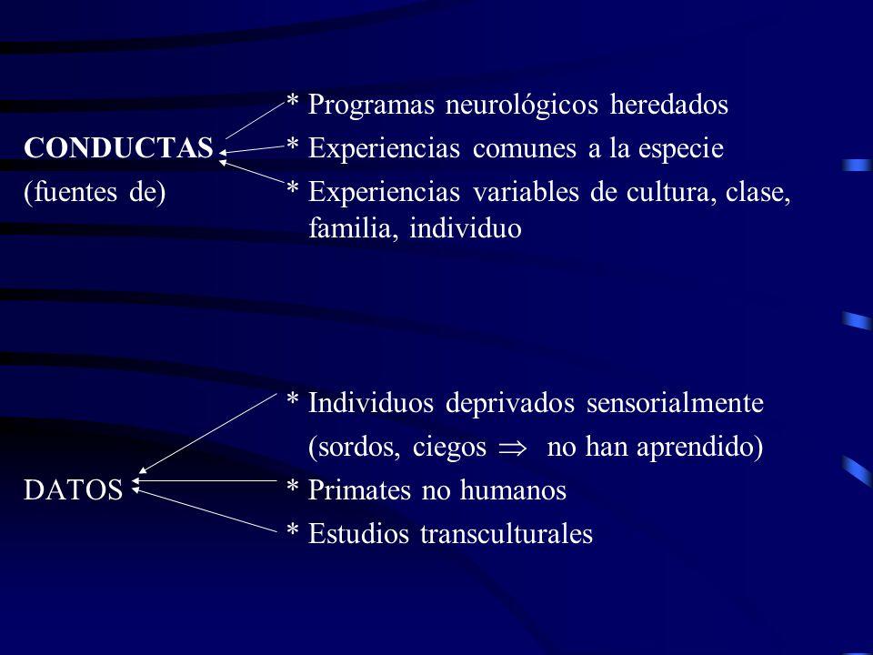 * Programas neurológicos heredados