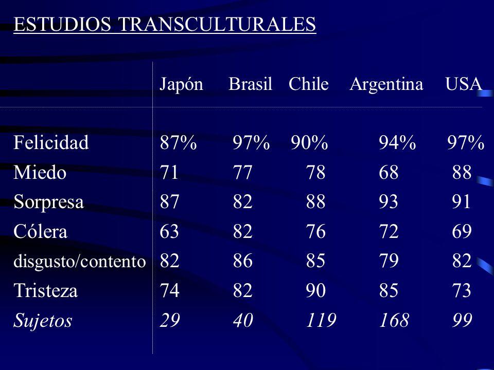 ESTUDIOS TRANSCULTURALES Japón Brasil Chile Argentina USA
