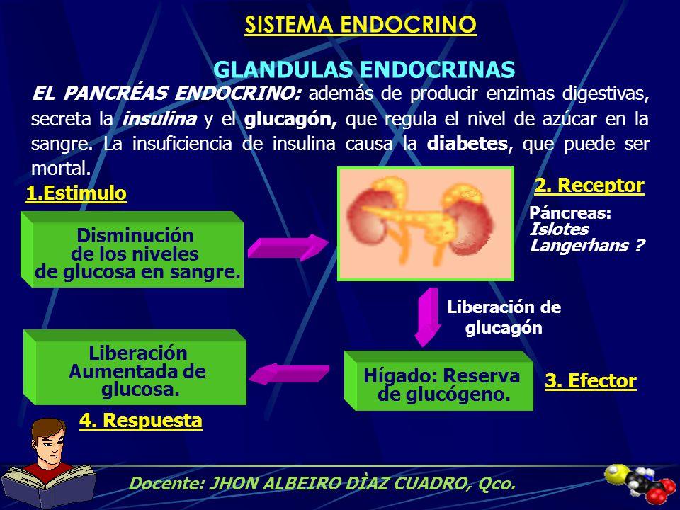 Liberación de glucagón