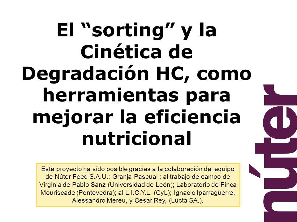 El sorting y la Cinética de Degradación HC, como herramientas para mejorar la eficiencia nutricional