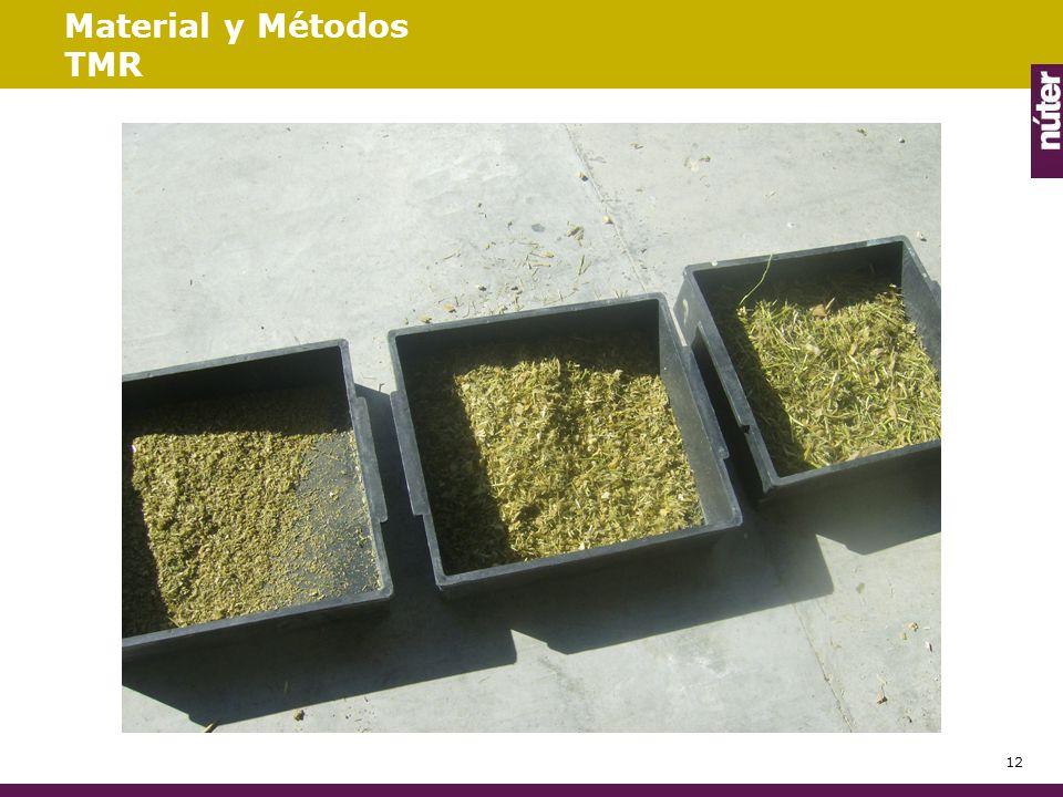 Material y Métodos TMR 12