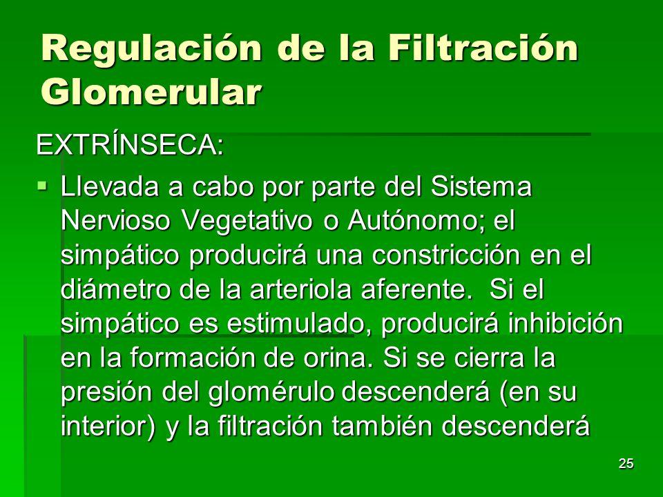 Regulación de la Filtración Glomerular