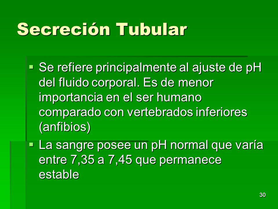 Secreción Tubular