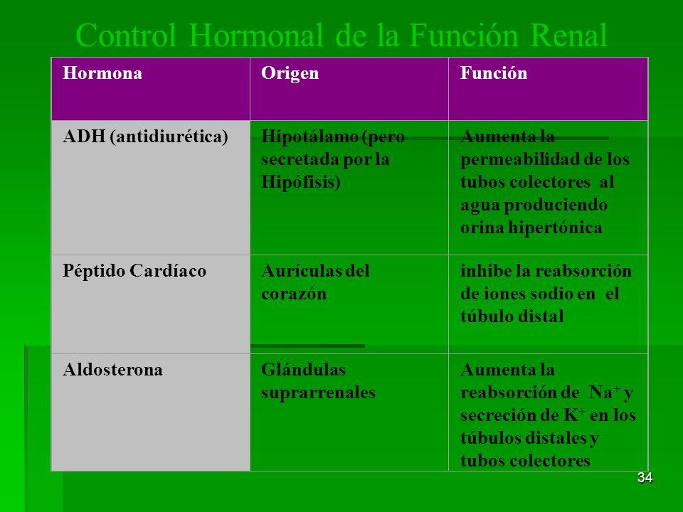 Control Hormonal de la Función Renal