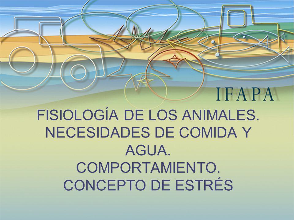 FISIOLOGÍA DE LOS ANIMALES. NECESIDADES DE COMIDA Y AGUA
