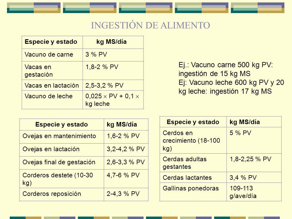 INGESTIÓN DE ALIMENTO Especie y estado. kg MS/día. Vacuno de carne. 3 % PV. Vacas en gestación.