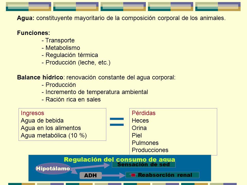 Regulación del consumo de agua