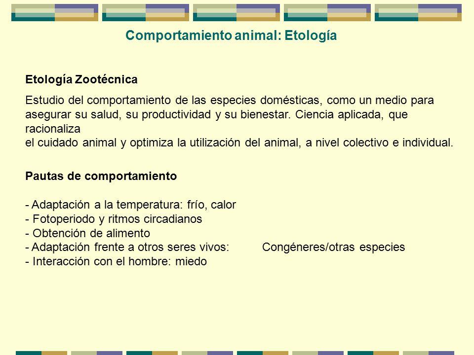 Comportamiento animal: Etología