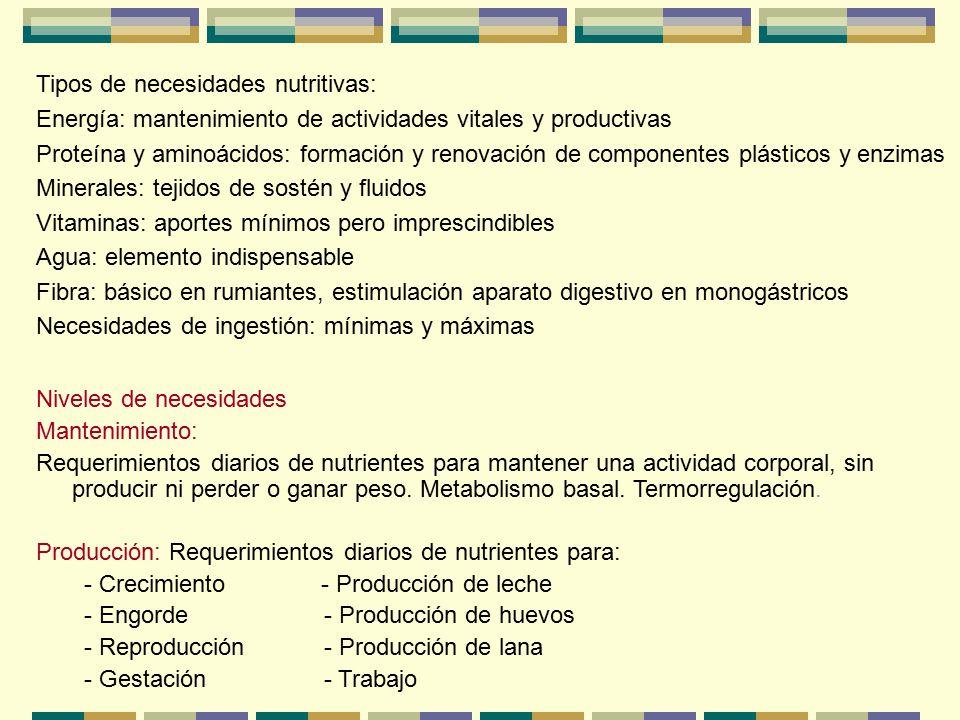 Tipos de necesidades nutritivas: