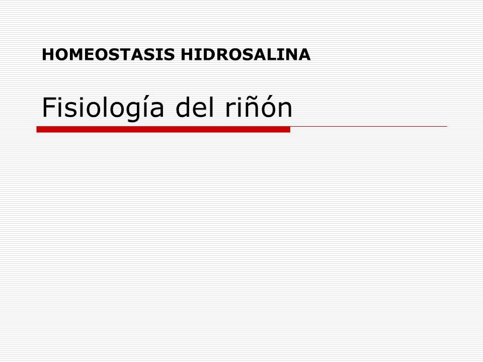 HOMEOSTASIS HIDROSALINA