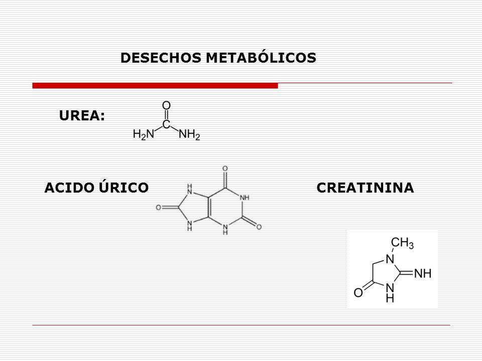 tengo el acido urico alto que no puedo comer remedios para el acido urico gota tratamientos naturales para bajar el acido urico