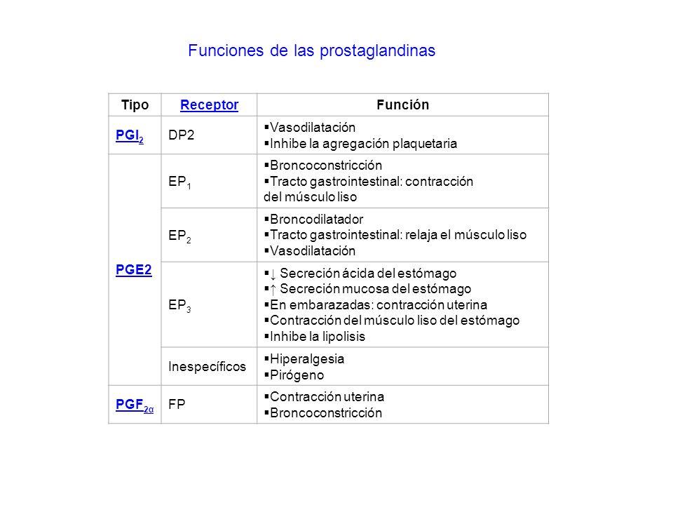 Funciones de las prostaglandinas