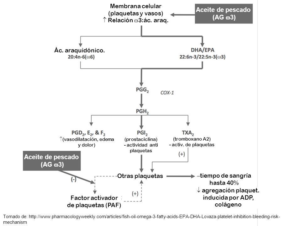 Aceite de pescado (AG 3) Aceite de pescado (AG 3)
