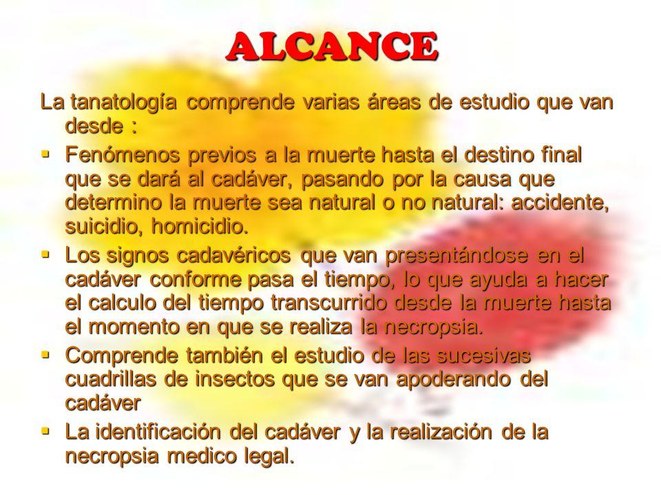 ALCANCE La tanatología comprende varias áreas de estudio que van desde :