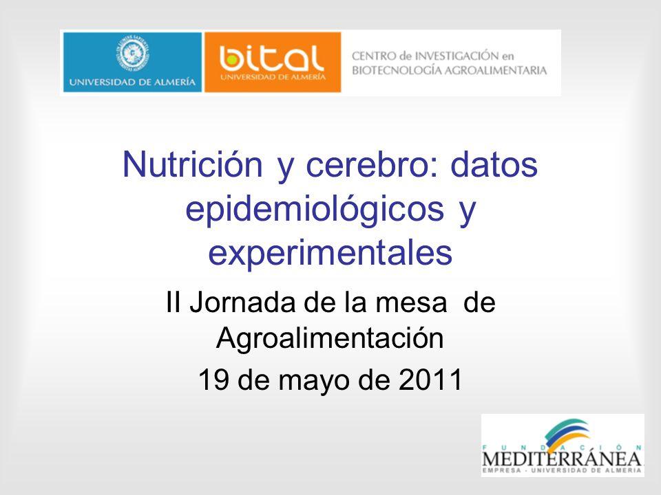 Nutrición y cerebro: datos epidemiológicos y experimentales