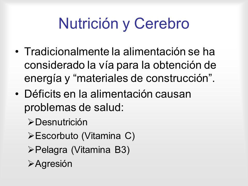 Nutrición y Cerebro Tradicionalmente la alimentación se ha considerado la vía para la obtención de energía y materiales de construcción .