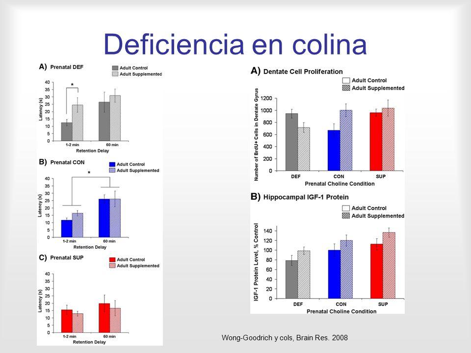 Deficiencia en colina Wong-Goodrich y cols, Brain Res. 2008