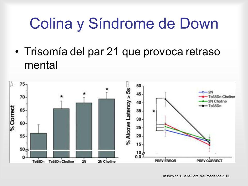 Colina y Síndrome de Down