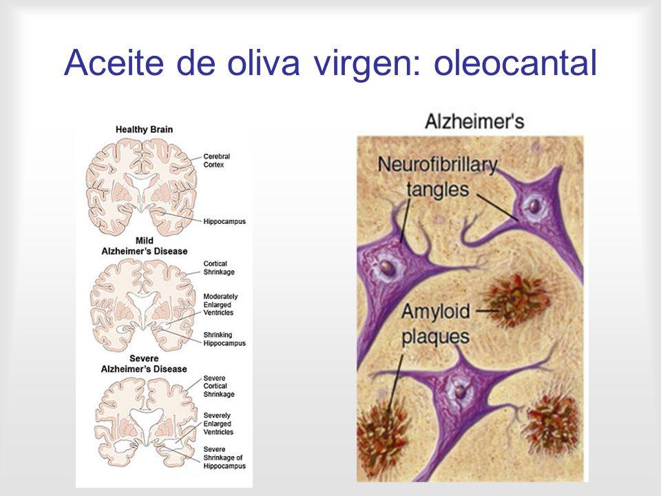 Aceite de oliva virgen: oleocantal