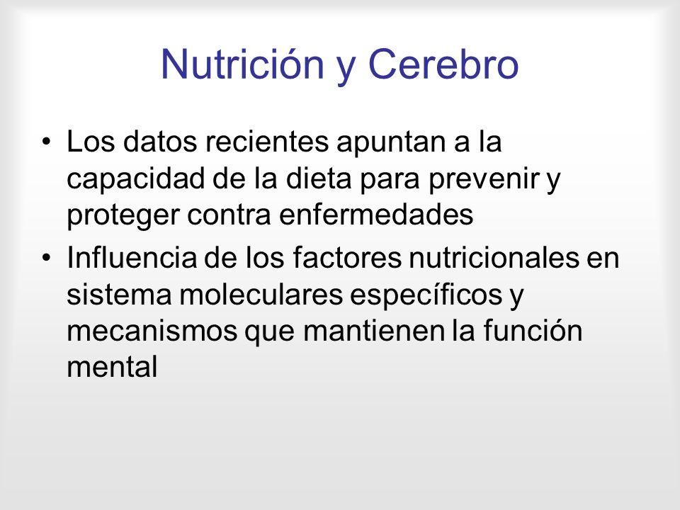 Nutrición y Cerebro Los datos recientes apuntan a la capacidad de la dieta para prevenir y proteger contra enfermedades.