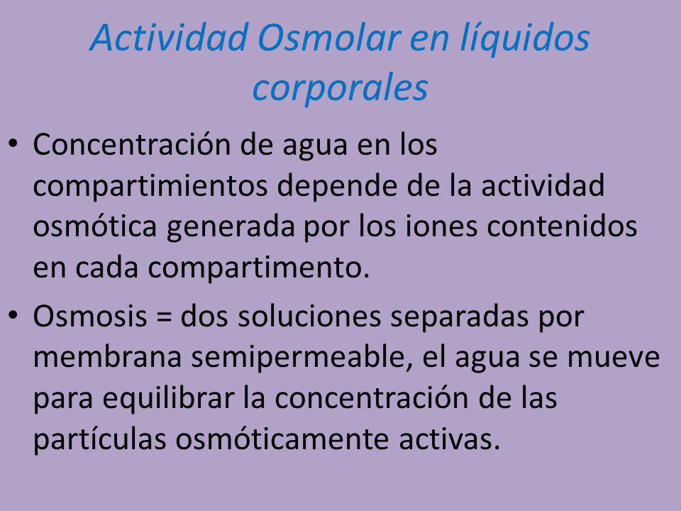 Actividad Osmolar en líquidos corporales