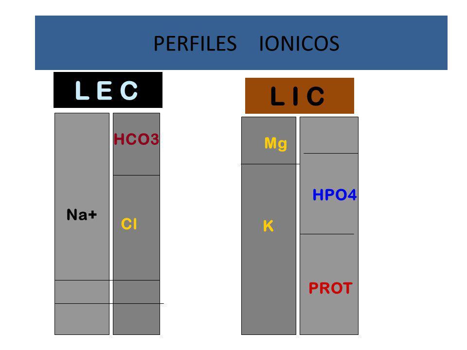PERFILES IONICOS L E C L I C Na+ K HCO3 Mg HPO4 Cl PROT