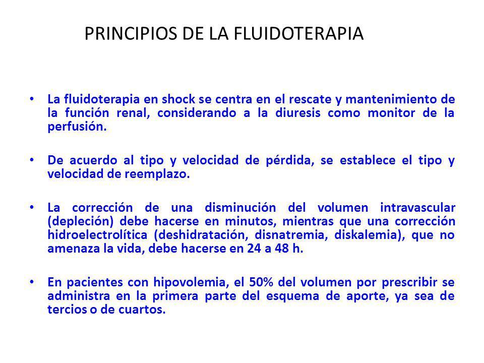 PRINCIPIOS DE LA FLUIDOTERAPIA