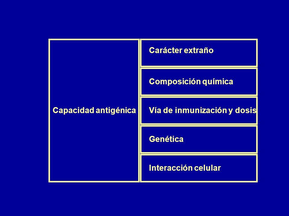 Carácter extraño Composición química. Capacidad antigénica. Vía de inmunización y dosis. Genética.