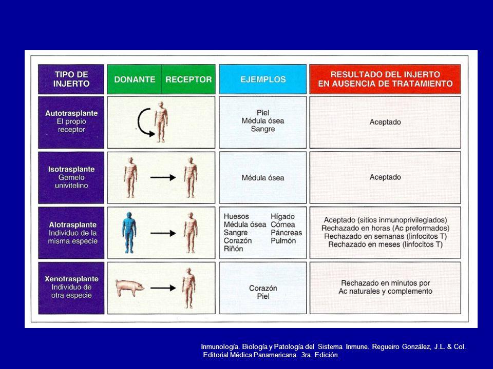 Inmunología. Biología y Patología del Sistema Inmune