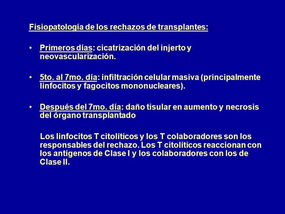 Fisiopatología de los rechazos de transplantes: