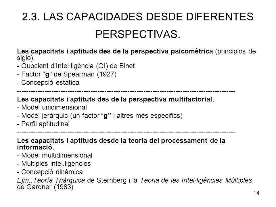 2.3. LAS CAPACIDADES DESDE DIFERENTES PERSPECTIVAS.