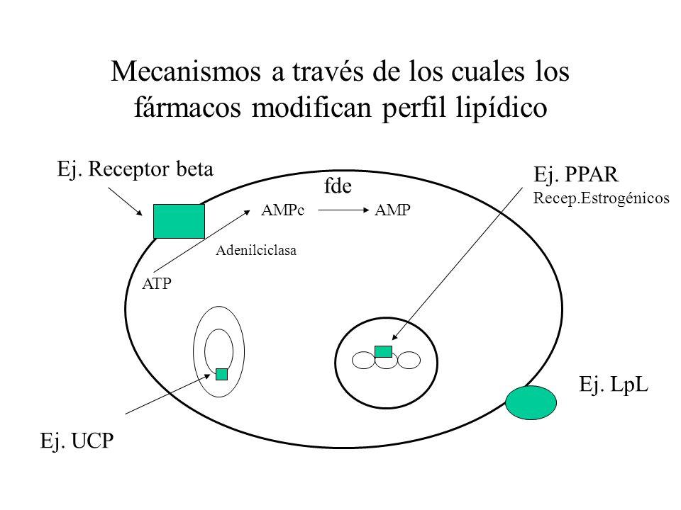 Mecanismos a través de los cuales los fármacos modifican perfil lipídico