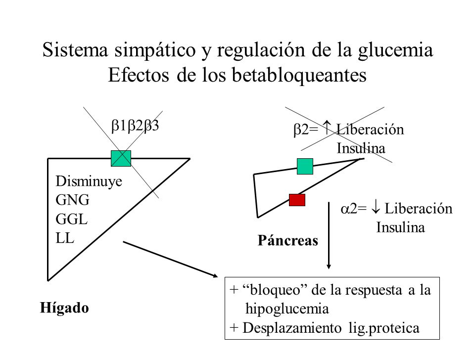 Sistema simpático y regulación de la glucemia Efectos de los betabloqueantes
