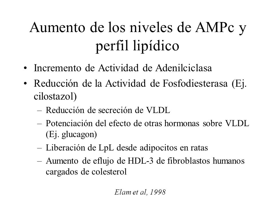Aumento de los niveles de AMPc y perfil lipídico