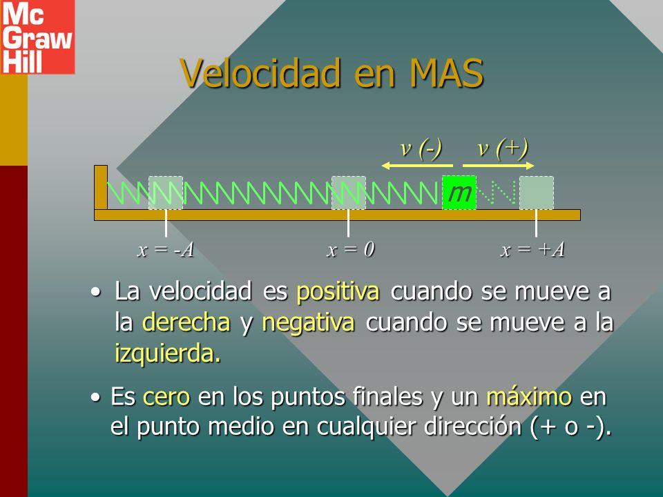 Velocidad en MAS m v (-) v (+)