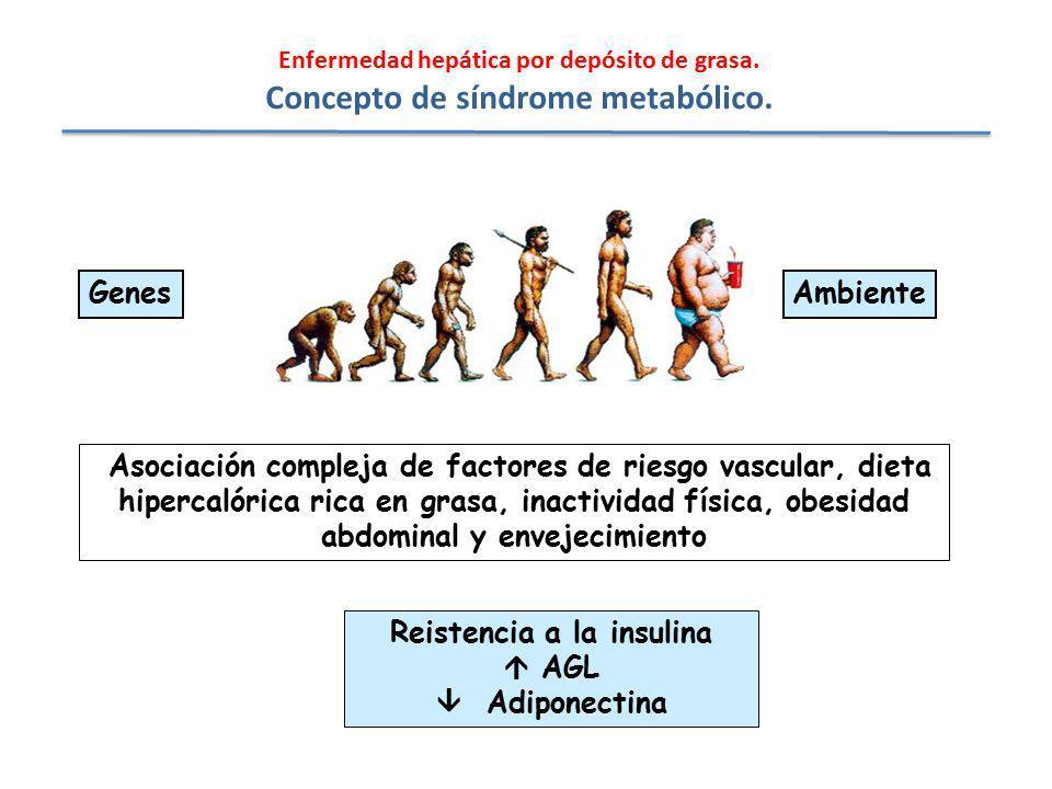 Concepto de síndrome metabólico.