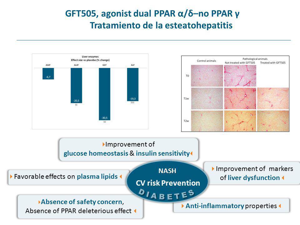 GFT505, agonist dual PPAR α/δ–no PPAR γ Tratamiento de la esteatohepatitis