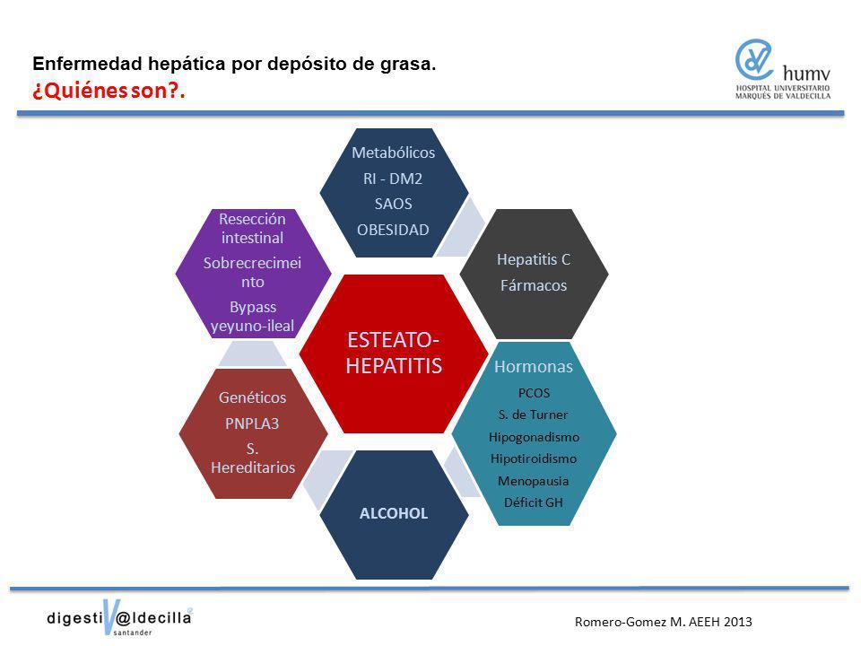 ESTEATO-HEPATITIS ¿Quiénes son . Hormonas