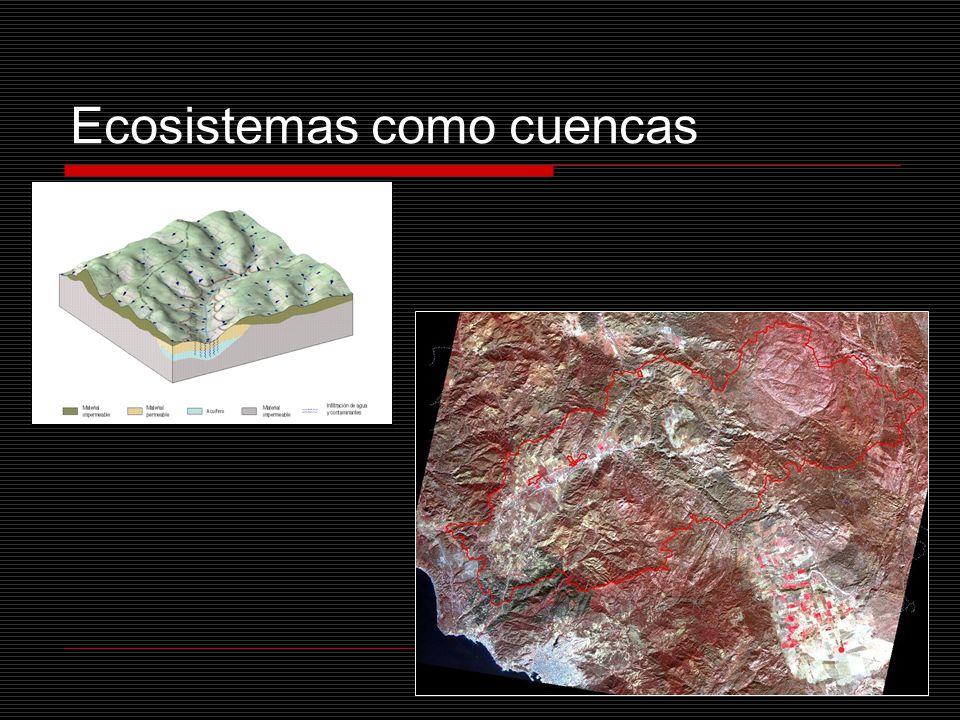 Ecosistemas como cuencas