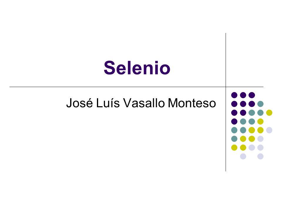 José Luís Vasallo Monteso