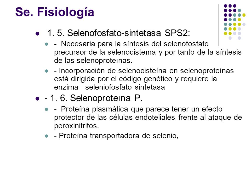 Se. Fisiología 1. 5. Selenofosfato-sintetasa SPS2: