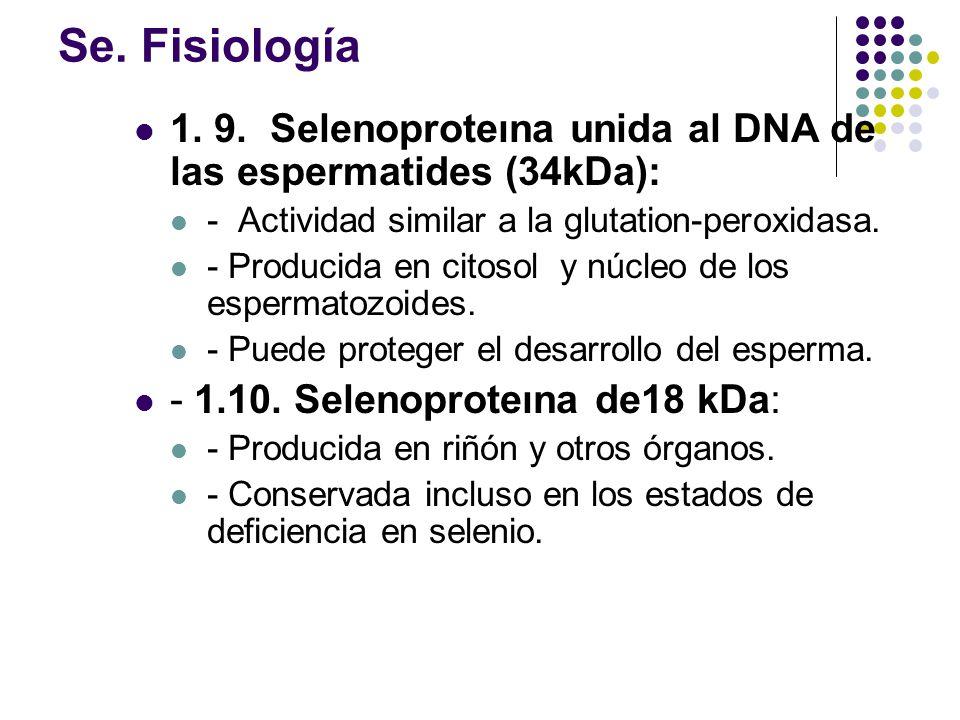 Se. Fisiología 1. 9. Selenoproteına unida al DNA de las espermatides (34kDa): - Actividad similar a la glutation-peroxidasa.