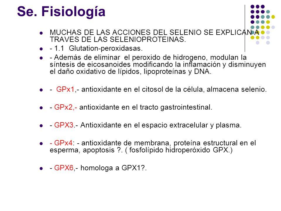 Se. Fisiología MUCHAS DE LAS ACCIONES DEL SELENIO SE EXPLICAN A TRAVES DE LAS SELENIOPROTEINAS. - 1.1 Glutation-peroxidasas.