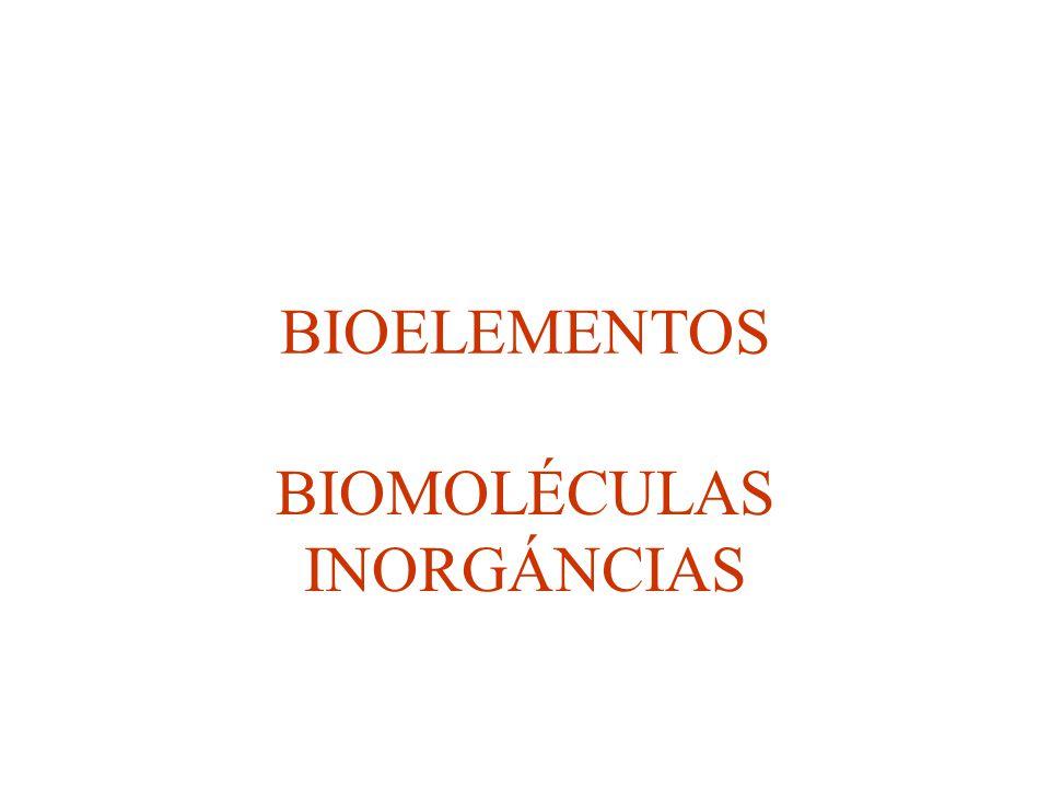 BIOMOLÉCULAS INORGÁNCIAS