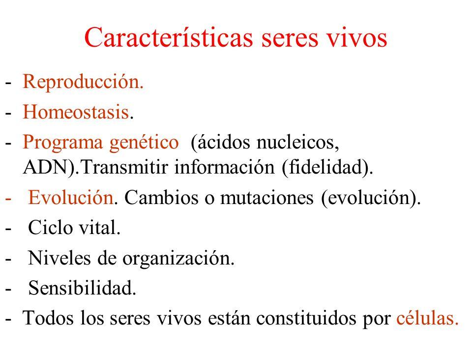 Características seres vivos